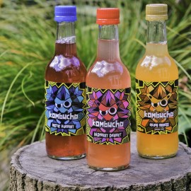 Kombucha Fermented Drink Selection
