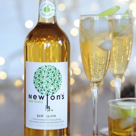 Newton's appl fizzics - just apple (750ml)