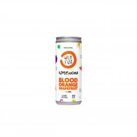Blood Orange Kombucha Fermented Tea (12 Cans)