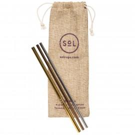 Reusable Stainless Steel Straws Kit