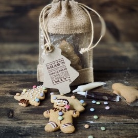 Christmas Gingerbread Decorating Kit
