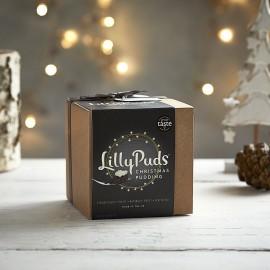 Christmas Pudding (Reduced Sugar)
