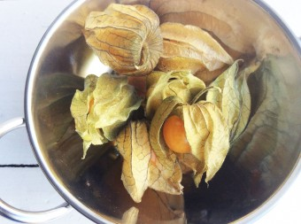 What to Cook with Physalis?