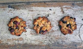 Gorgeous Gluten Free Tiger Nut Florentines