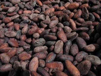 Raw chocolate Vs Regular Chocolate