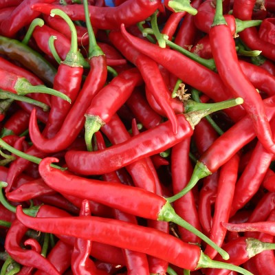 RED PEPPERS Craft Buttons Novelty Chilli Cayenne Fruit Chile Chili Food Cooking