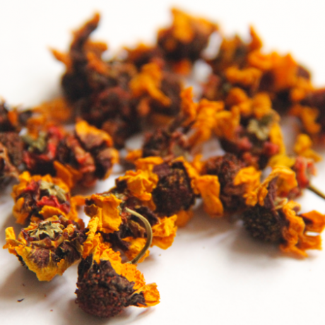 Snow Chrysanthemum Tea