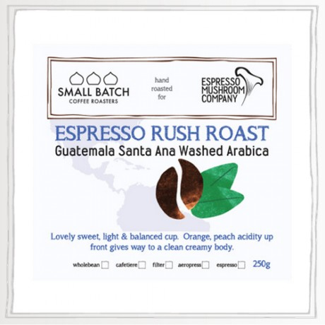 Specialty Hand Roasted Coffee Bundle