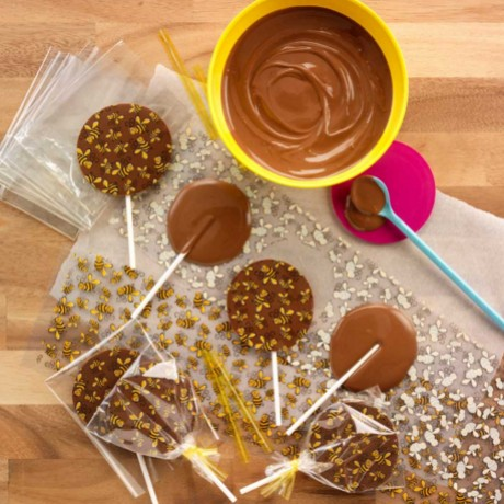 Bumblebee Chocolate Lollipop Kit Yumblescom