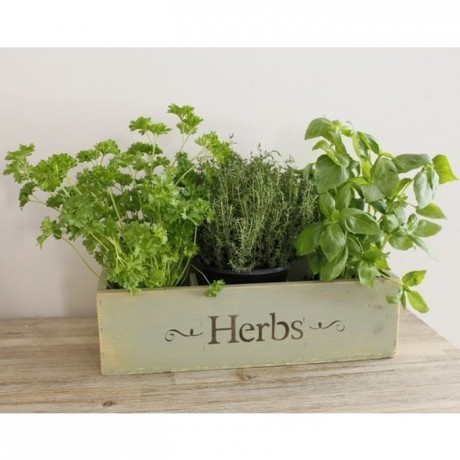 Rustic Window Box Herb Planter