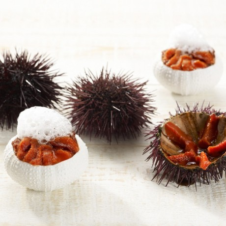 Porcelain Sea Urchin Gift Set with Spoons & Cloud Plate