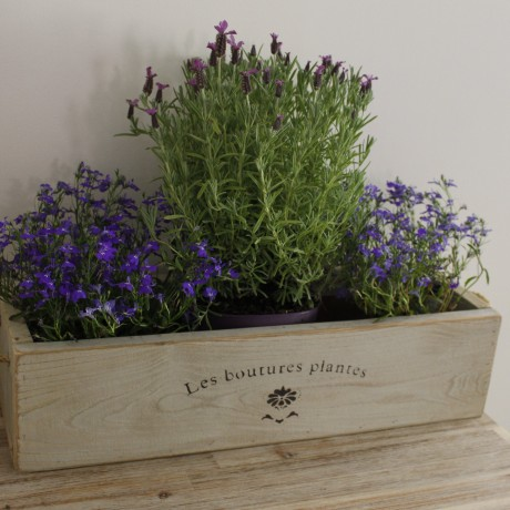 Vintage trough in York Stone