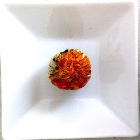 Orange Ruffle Giant Flowering Tea Bulbs (Elegant Glass Canister)