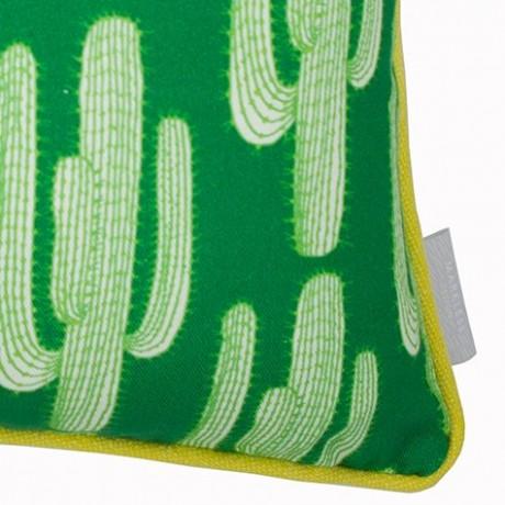 Cactus Cushion Close Up