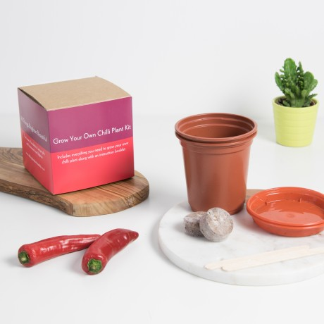 Grow Your Own Chilli Plant Kit