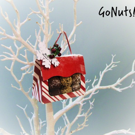 GoNuts! Christmas 'Free From' Variety Snack Pack