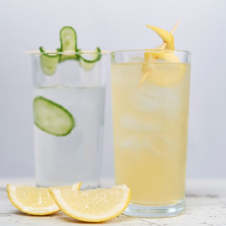 Gin Cocktail Kit