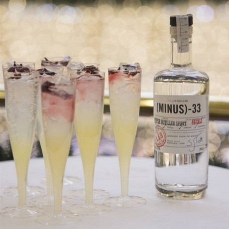 Minus 33 Juniper Distilled Spirit