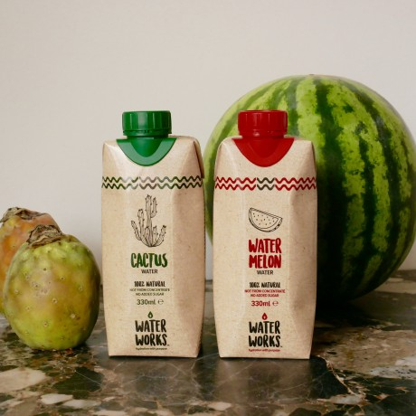 Watermelon Water + Cactus Water Selection (12 Pack)