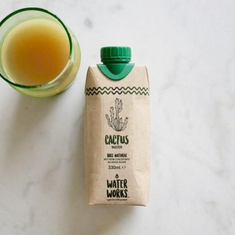 Cactus Water (12 pack)