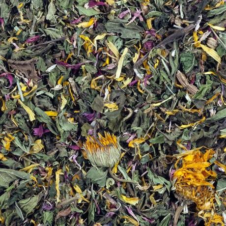14 Detox Tea