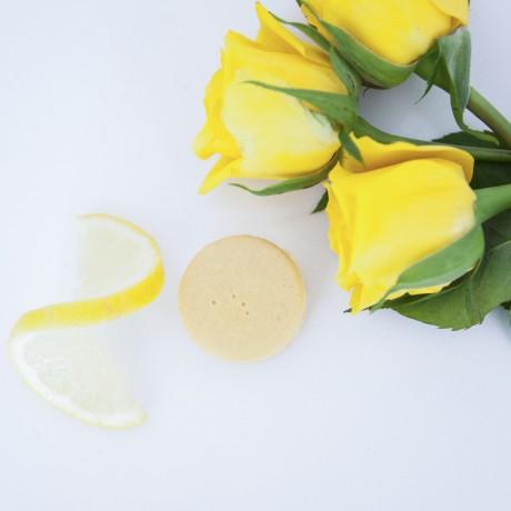 Mini Kit Lemon Macarons