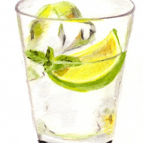 Glass of Gin & Tonic Illustration