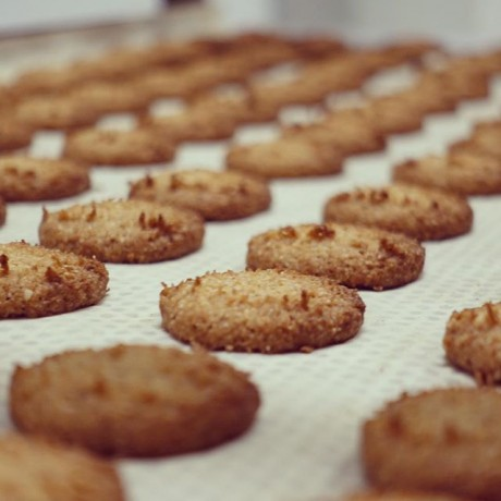 Gluten Free Organic Cheese Biscuit