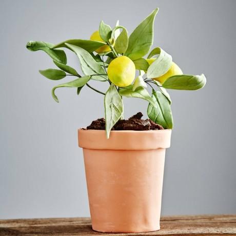 Edible Lemon Tree Cake