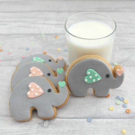 Elephant Iced Cookies Gift/Favours