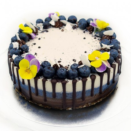 Raw Chocolate, Blueberry & Coconut Cake