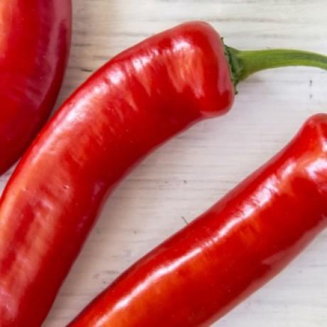 spicy red chilli rockin' good rock salt co.