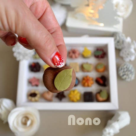 Nono Cocoa Advent Calendar - Vegan Superfood Chocolates - Limited Edition