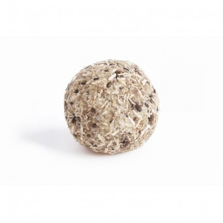 Coconut & Chia Vegan Healthy Balls