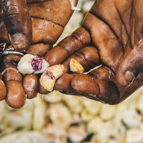 Rare Madagascan 70% Dark Chocolate - Grand Cru de Rianila