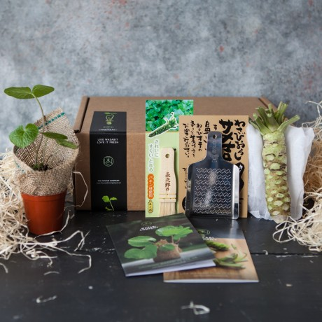 Delux Fresh Wasabi & Plant Set