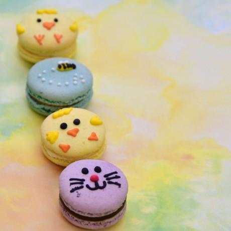 Easter Animals Macaron Gift Box