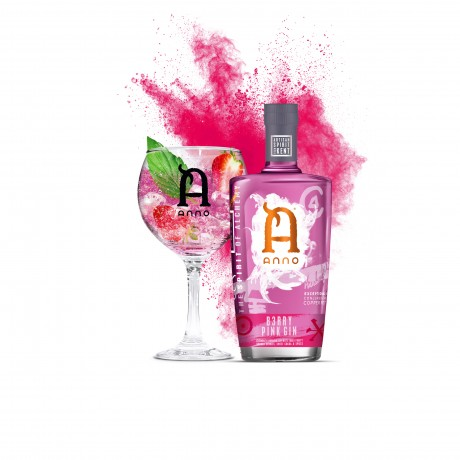 Anno B3rry Pink Gin perfect serve