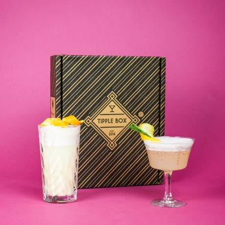 White Lady and Gin Fizz Cocktail Set
