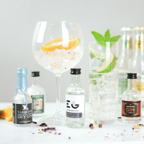 Perfect Gin And Tonic Set