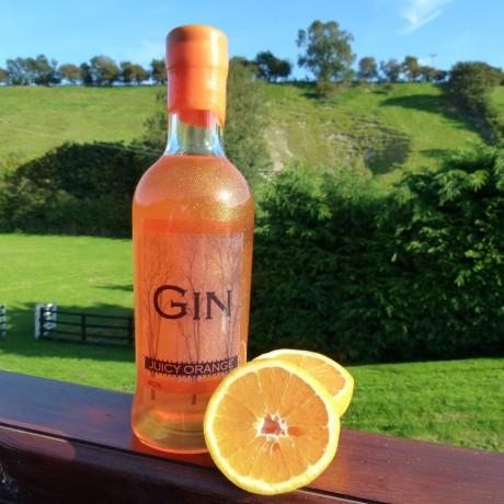 Juicy Orange Gin Lifestyle