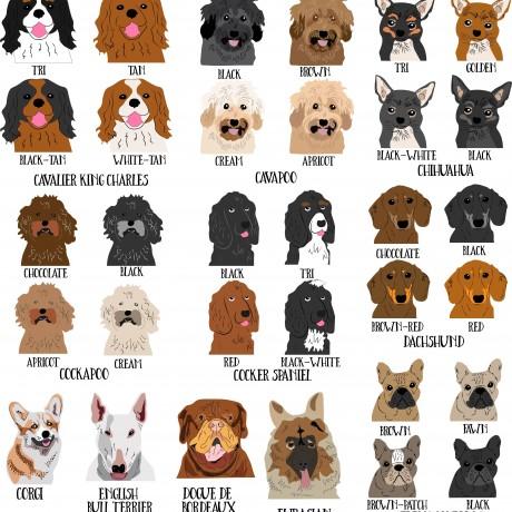 Personalised University Graduation Dog Mug (Various Breeds and Colours)