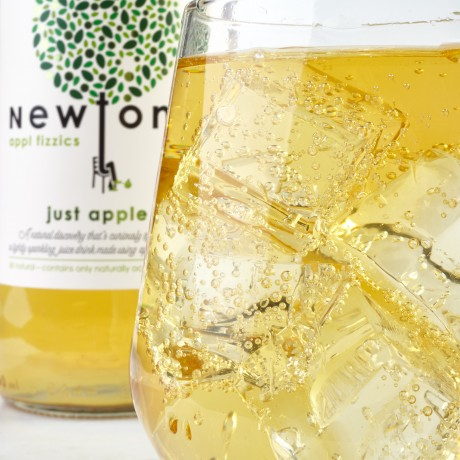 Newton's appl fizzics - just apple (12 x 330ml)