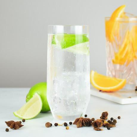 Fresh Gin and tonic
