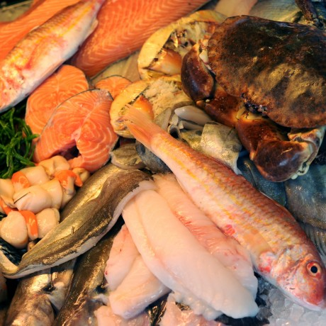Luxury Cornish Seasonal Fresh Fish Box