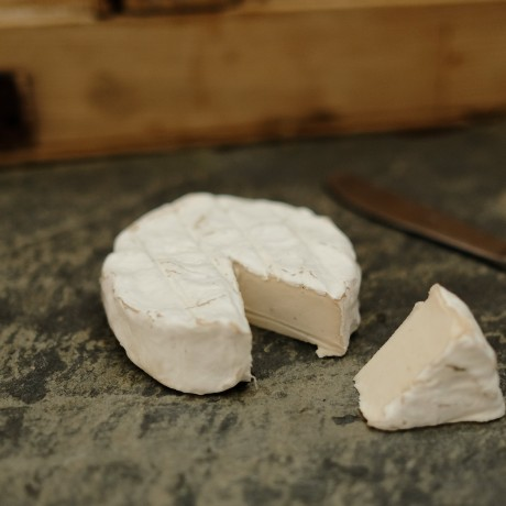 Cashewbert - Vegan Cheese