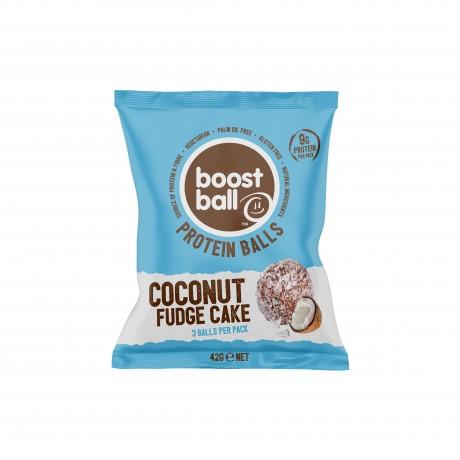 Coconut Fudge Cake Protein Balls (12 pack)