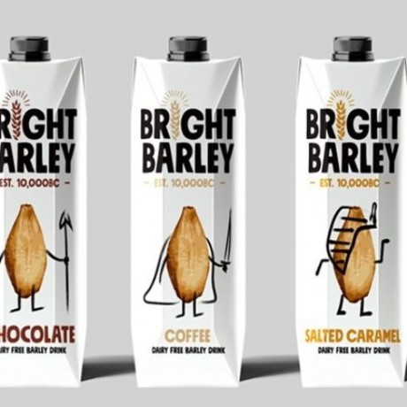 Bright Barley Dairy Free Drinks - Mixed Case (12 x 330ml)