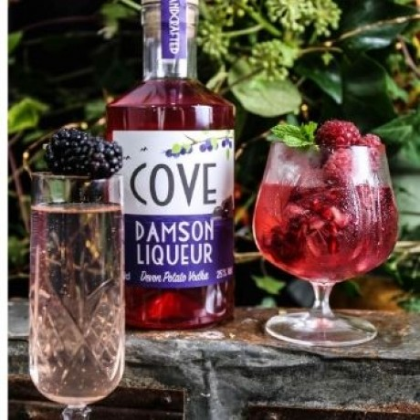 Devon Cove Damson Liqueur and drink options