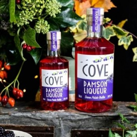 Devon Cove Damson Liqueur 50cl and 20cl